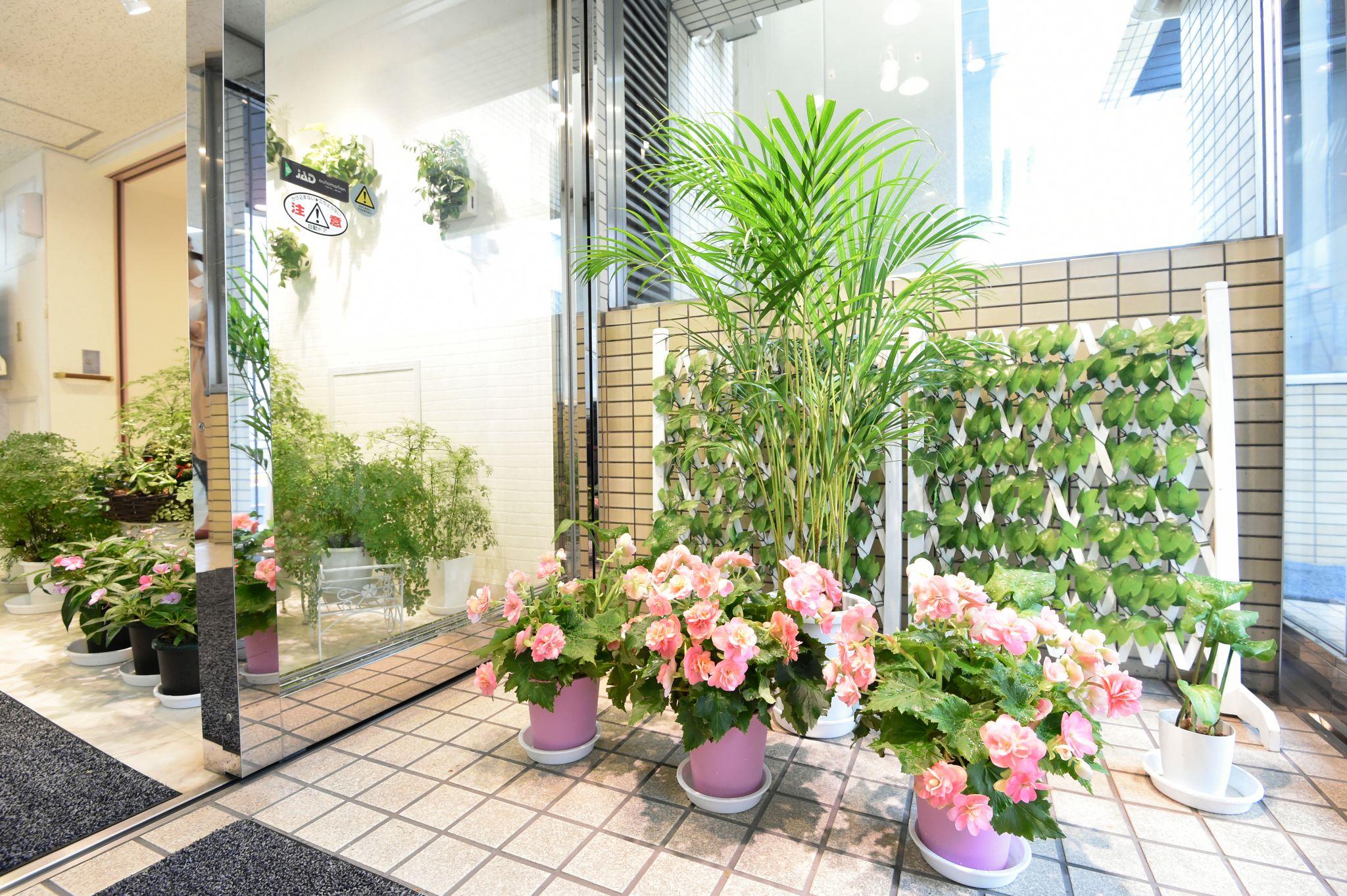 花と植物で皆様をお迎えします