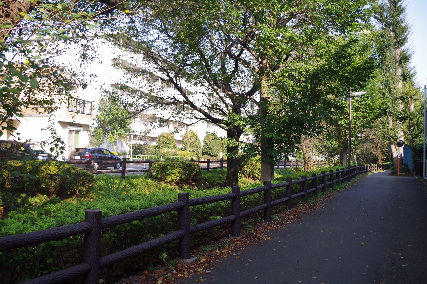 周辺施設:千川上水