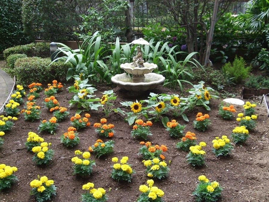 季節の花があふれる中庭