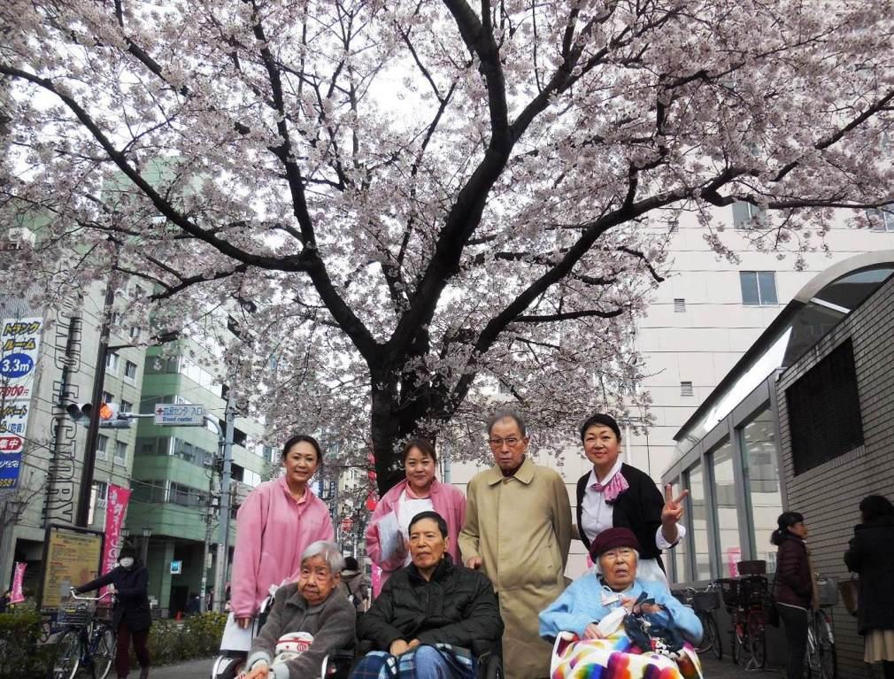 観桜イベント