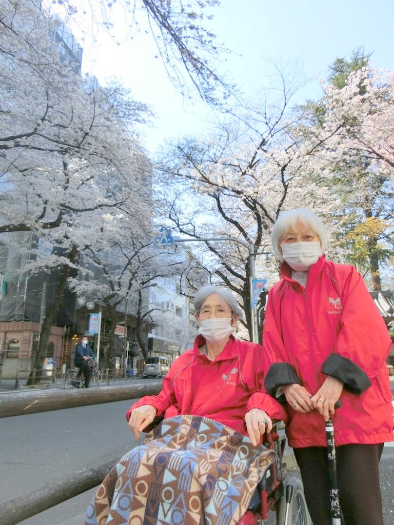 お花見イベント シルバーシティ武蔵境