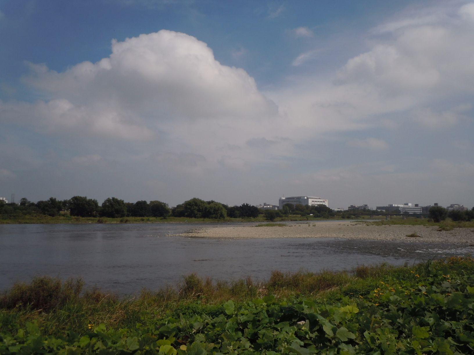 周辺施設 多摩川