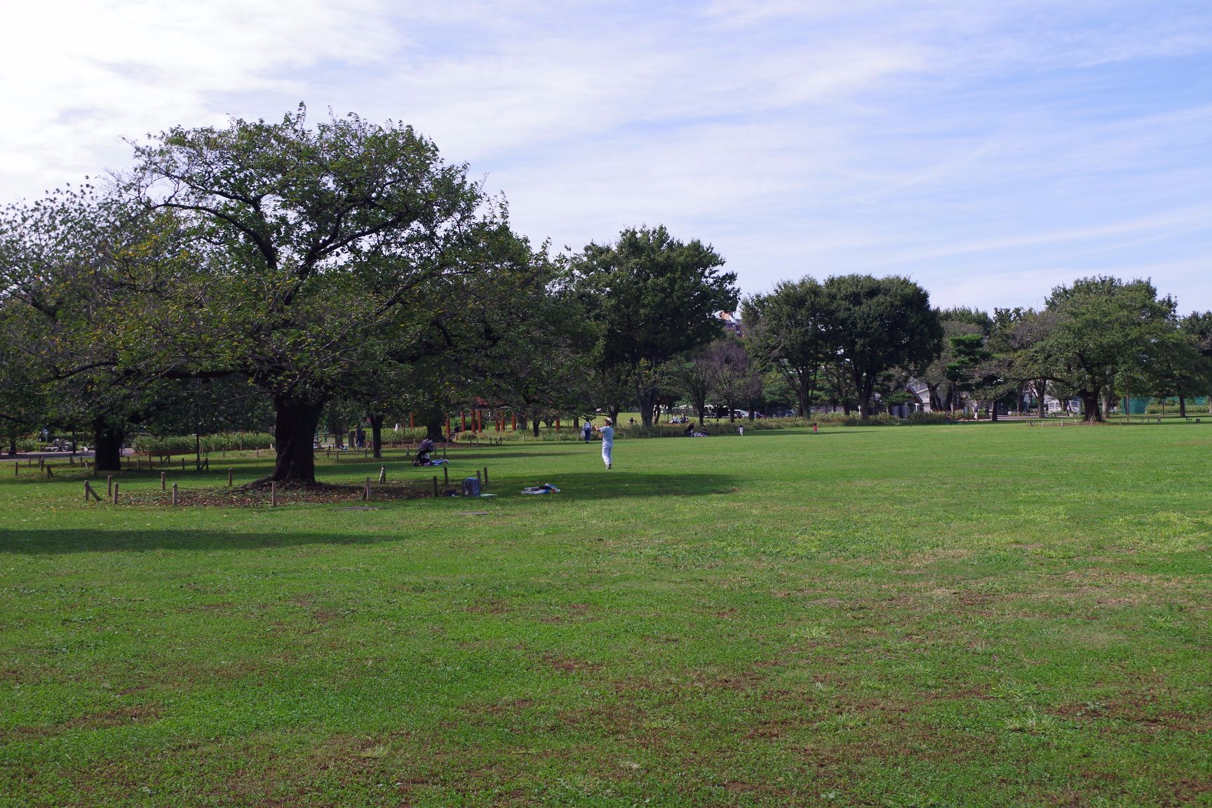 周辺施設:武蔵野中央公園
